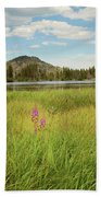 Alpine Meadow Beach Towel
