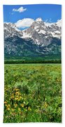 Alpine Spring Beach Towel