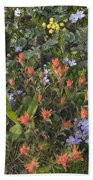 Alpine Wildflowers Hurricane Ridge 4031 Beach Towel