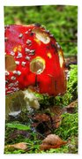 Amanita Muscaria Beach Towel