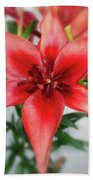 Amaryllis In Fading Beach Towel