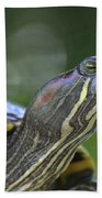 Amazing Close-up Painted Turtle Resting Beach Towel