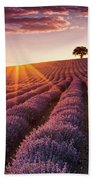 Amazing Lavender Field At Sunset Beach Towel