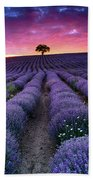 Amazing Lavender Field With A Tree Beach Sheet