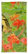 Amazonia Butterfly Beach Towel