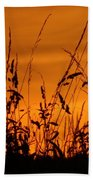 Amber Sundown Meadow Grass Silhouette  Beach Towel