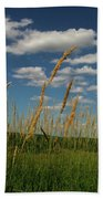 Amber Waves Of Grain Beach Towel