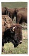 American Bison 5 Beach Towel by James Sage