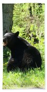 American Black Bear Beach Towel