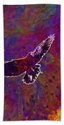 American Crow Flying Ave Fauna  Beach Towel