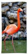 American Flamingo Beach Towel