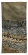 American Gator Beach Towel