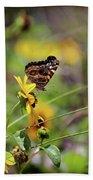 American Lady Butterfly Seaside Beach Towel