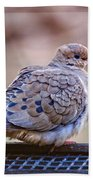 American Mourning Dove Beach Sheet