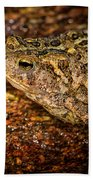 American Toad Beach Towel