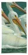 American White Pelicans Beach Towel