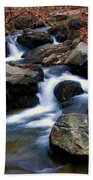 Amicalola Stream Beach Towel