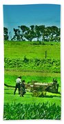 Amish Gathering Hay Beach Towel