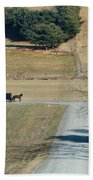 Amish Horse And Buggy On A Country Road Beach Towel
