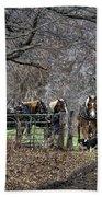 Amish Horses In Harness Beach Towel