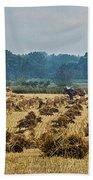 Amish Making Grain Shocks Beach Towel