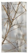 Amongst The Branches Beach Towel