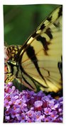 Amorous Butterfly And Faerie Beach Towel