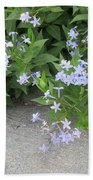 Amsonia Tabernaemontana Beach Towel