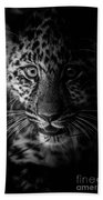 Amur Cub Beach Towel