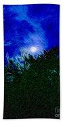 An Affair With Isolation_forest Beach Towel
