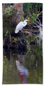 An Egrets World Beach Towel