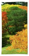 An Explosion Of Color Beach Towel