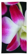 An Orchid Beach Towel