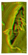 Anaglyph Of Infected Lettuce Leaf Beach Sheet