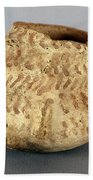 Anasazi Bowl Beach Towel