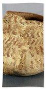 Anasazi Bowl Beach Sheet