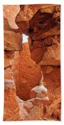 Anasazi Cliff Dwellings #8 Beach Towel