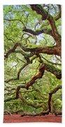 Ancient Angel Oak Tree  Beach Towel