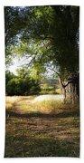 Ancient Willows #1 Beach Towel