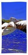 And The Seagull Follows Pelican Beach Towel