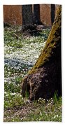 Anemone Forest Beach Towel