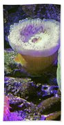 Anemone Beach Towel