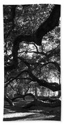 Angel Oak Limbs Bw Beach Towel