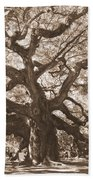 Angel Oak Sepia Beach Towel