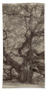 Angel Oak Tree Beach Towel