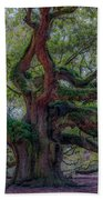 Angel Oak Tree Deeply Rooted History Beach Towel