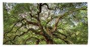 Angel Oak Tree Of Life Beach Towel
