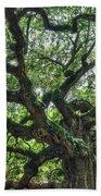 Angel Oak Tree Beach Towel