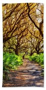 Angel Oaks In Sunshine Beach Towel