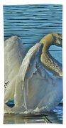 Angel Wings Beach Sheet